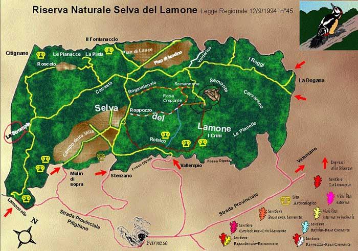 Riserva Naturale Selva del Lamone
